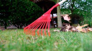 La mejor oferta de un 【Elemento de Jardín】 que podrás localizar